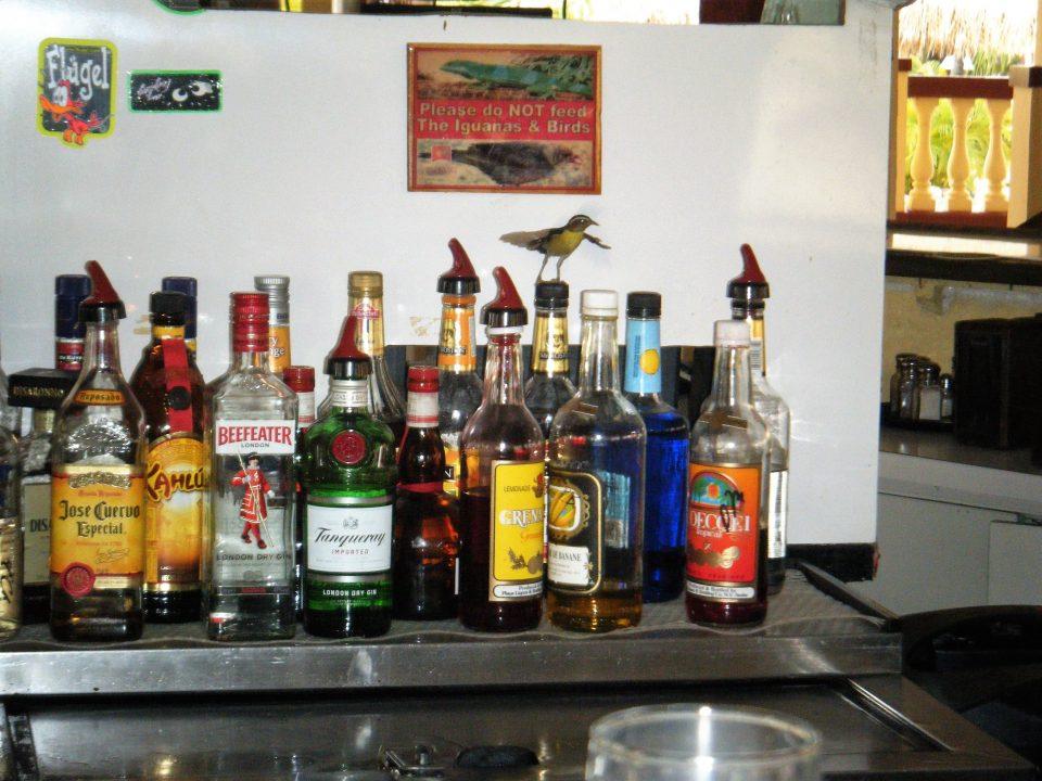 Schnappsdrossel auf Flaschen