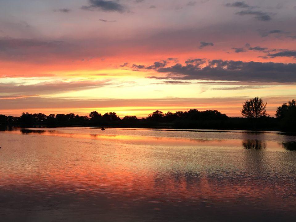 Sonnenuntergang mit Wildgänsen