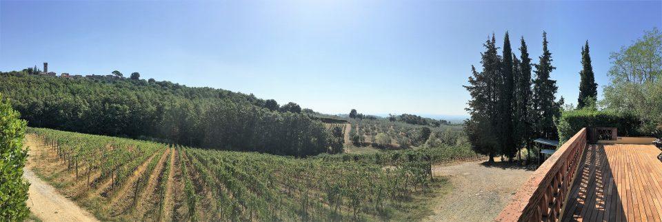 Sonnenterasse Weingut