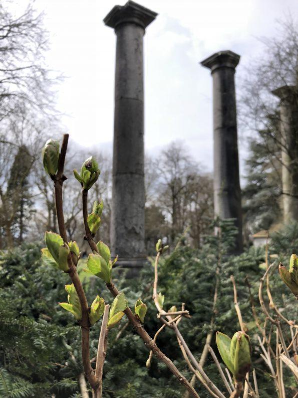 Säulen auf Berg