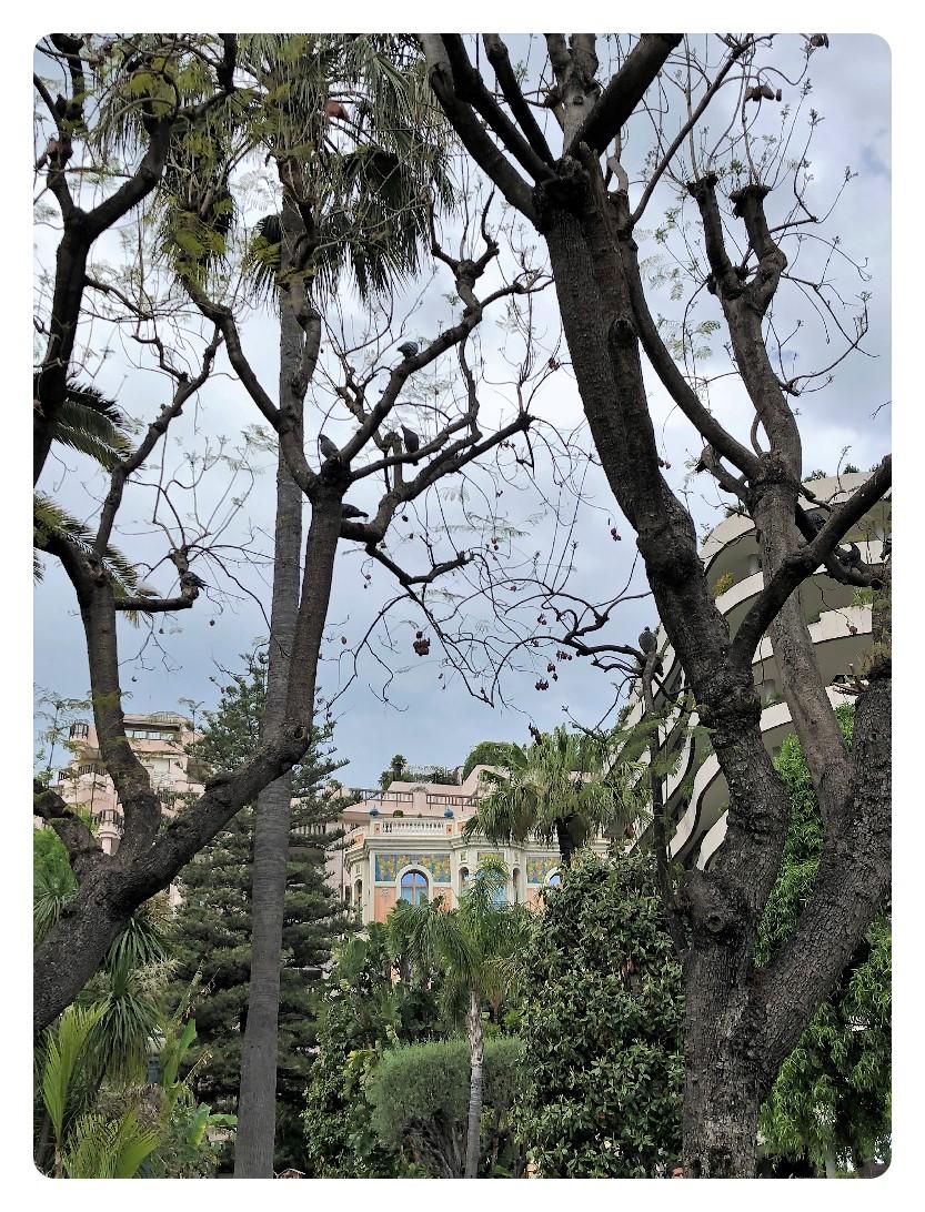 Blick aus Park zu Häusern