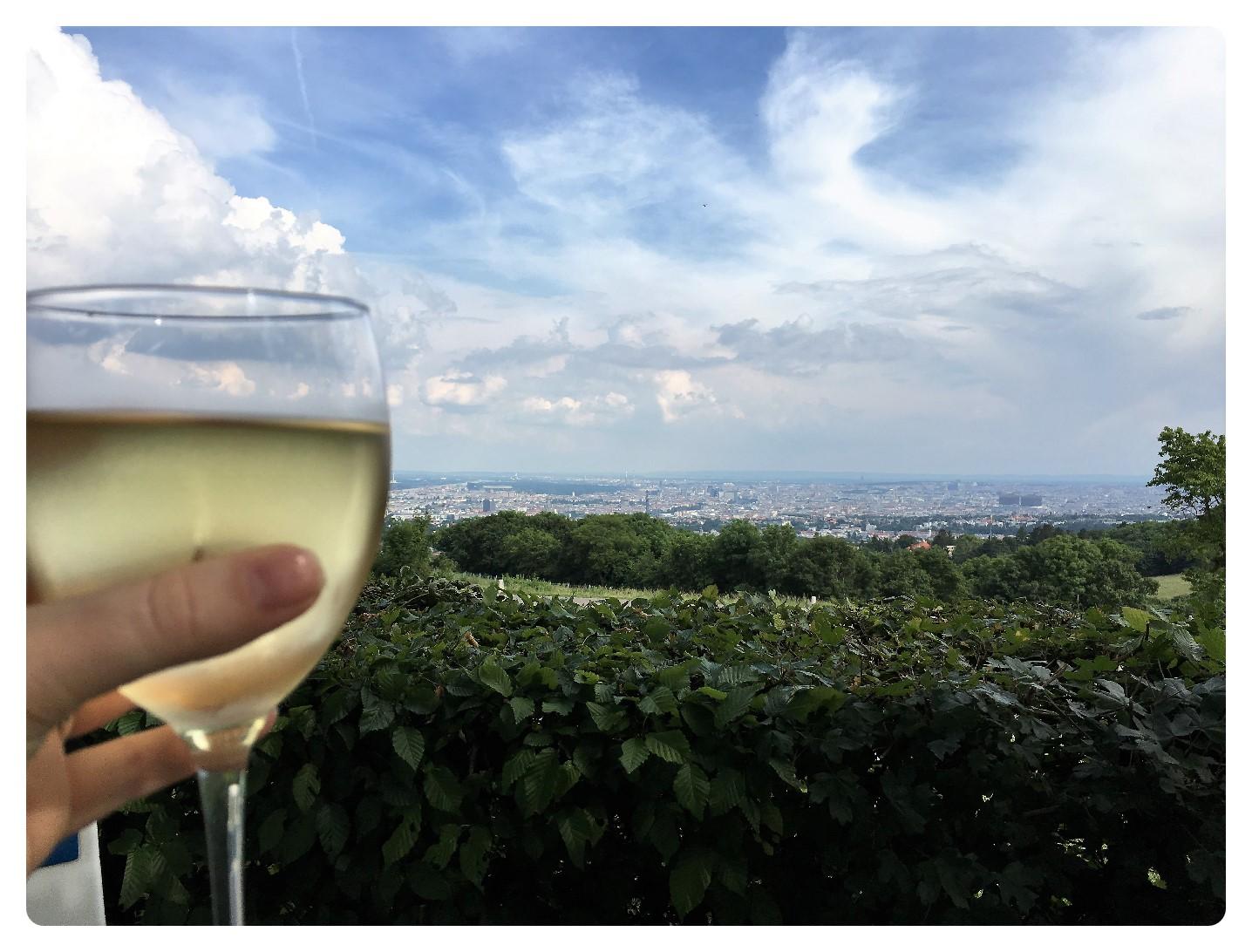 Heurigen mit Ausblick auf Wien