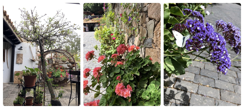 Restaurant und Blumen